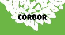 corbor